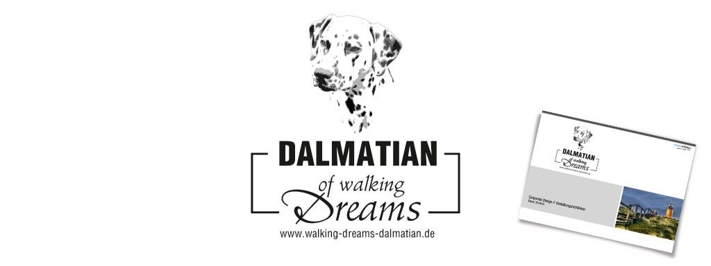 Dalmatian of walking Dreams