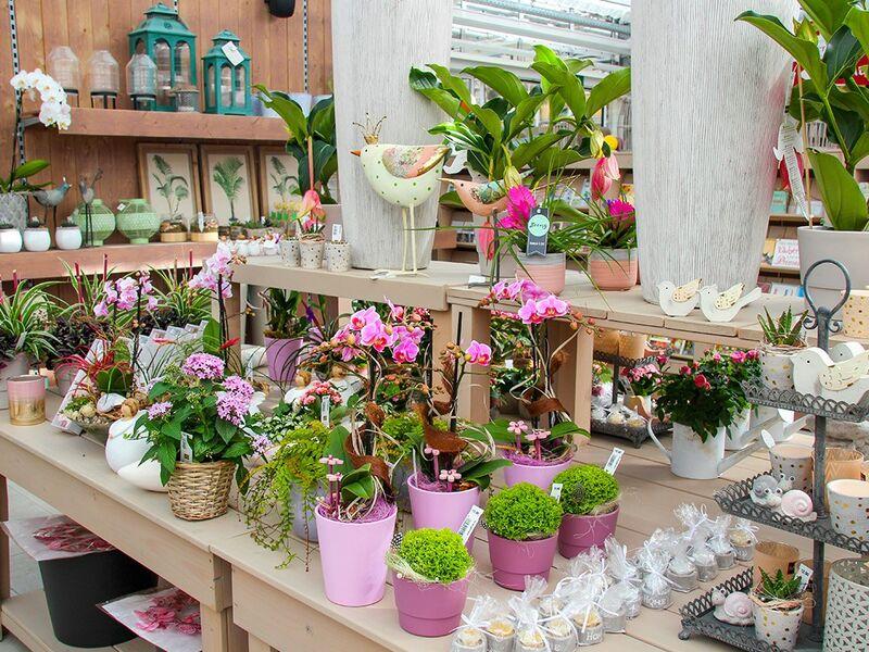 Pflanzencenter Kipper
